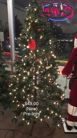 Pre Light Tree (New) in Fort Leonard Wood, Missouri