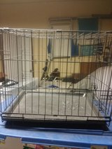 Small dog cage collapsible in Vacaville, California