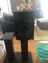Bookshelf Speakers with Stands $40 in Shorewood, Illinois