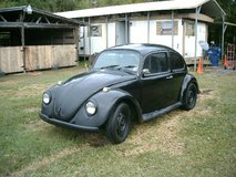 Volkswagen Beetle 1967 in Fort Polk, Louisiana