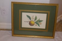 Triple matted olive green & gold Framed w/Glass Picture (Wall art) in Katy, Texas