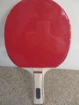 Table tennis bat in Lakenheath, UK