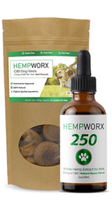 CBD for Pets in Nashville, Tennessee