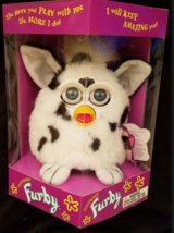 Furby - The Dalmatian in Vacaville, California