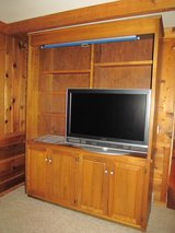 Walnut Entertainment Center in Chicago, Illinois