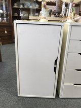 Storage Cabinet with door in Naperville, Illinois