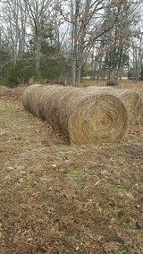hay bales in Rolla, Missouri
