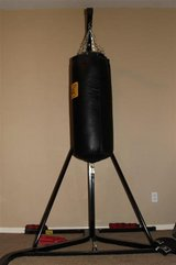 Everlast Punching Bag & Stand w/gloves & speed bag attachment in Cleveland, Texas