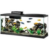 Wanted: My Items for aquariums or accessories. in Camp Lejeune, North Carolina