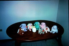 Ty Retired Beanie Baby Bunnies in Tinley Park, Illinois