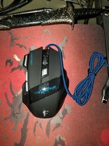 Gamer Mouse in Vacaville, California