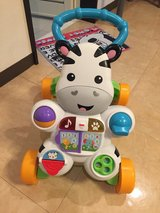 Push toy zebra Walker in Okinawa, Japan