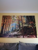 Woods in Fall Canvas Wall Print 165x100cm in Ramstein, Germany