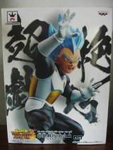 Dragonball SSG Vegeta in Okinawa, Japan