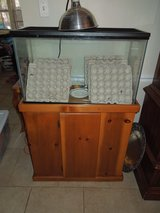 Reptile Aquarium 20 gallons and stand in Kingwood, Texas