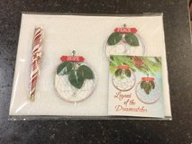 Set includes 1 Candy Cane Pen & 2 Dreamcatchers in Joliet, Illinois
