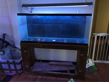 55 gallon fish tank in Las Vegas, Nevada
