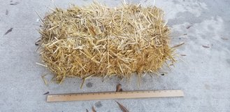 Small Hay Bail in Camp Lejeune, North Carolina