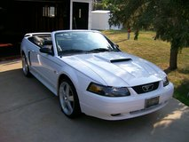 Ford Mustang GT Convertable in Chicago, Illinois