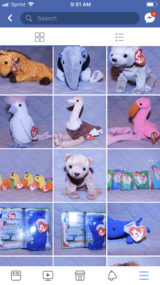 Beanie babies great condition in Chicago, Illinois