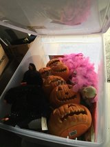 A tote full of Halloween goodies in 29 Palms, California