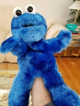 "Sesame Street Cookie Monster Plush Puppet 13"" in Plainfield, Illinois"