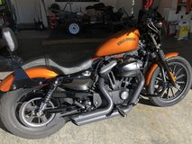 2014 Harley Davidson Iron 883 Sportster in Fort Leonard Wood, Missouri
