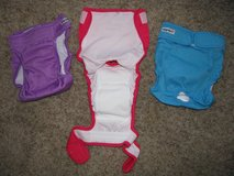 Brand New Washable Dog Diapers in Naperville, Illinois