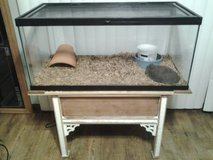 Ball Python with reptile enclosure and stand in Beaufort, South Carolina