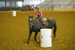 Horse Riding/Lessons on the Circle KRJ Ranch, LLC in Fort Polk, Louisiana