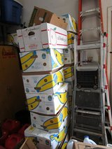 MOVING boxes, banana & FRUIT BOXES W/LIDS, and 5 egg boxes in Naperville, Illinois