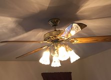 Ceiling Fan with 4 Lights in Bolingbrook, Illinois