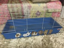 Bunny Cage in Westmont, Illinois