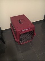 Pet Kennel - Small in Ramstein, Germany