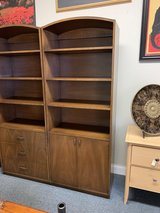 Bookcase with doors in Naperville, Illinois