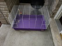 Small pet cage in Joliet, Illinois