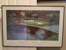 Augusta National  #12 Par Three Picture in Kingwood, Texas