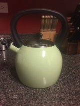 Water kettle in Naperville, Illinois