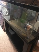 fish tank and stand in Fort Campbell, Kentucky