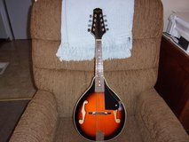 Mandolin in Warner Robins, Georgia