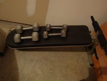 Incline Bench with Dumbbells in Charleston, South Carolina