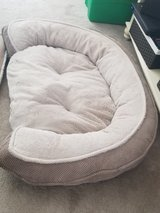 large Dog bed in Joliet, Illinois