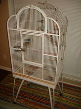 Bird Cage & 3 Parakeets For Sale in Byron, Georgia