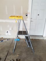 Cosco painters ladder in St. Charles, Illinois