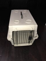 Pet carrier in Joliet, Illinois