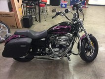 2013 Harley 1200 cp in Clarksville, Tennessee