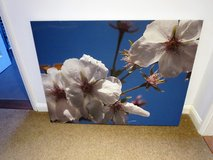 SELECTION OF CANVAS PICTURES in Lakenheath, UK