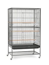 Prevue Pet Products Wrought Iron Flight Cage with Stand in Kingwood, Texas