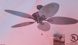 Tropical Ceiling Fan in Spring, Texas