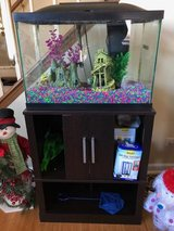 20 Gallon Fish Tank + Like New Stand in Naperville, Illinois